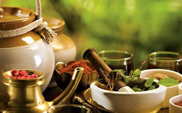 What exactly is Ayurveda about?